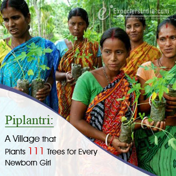 Piplantri: A Village that Plants 111 Trees for Every Newborn Girl