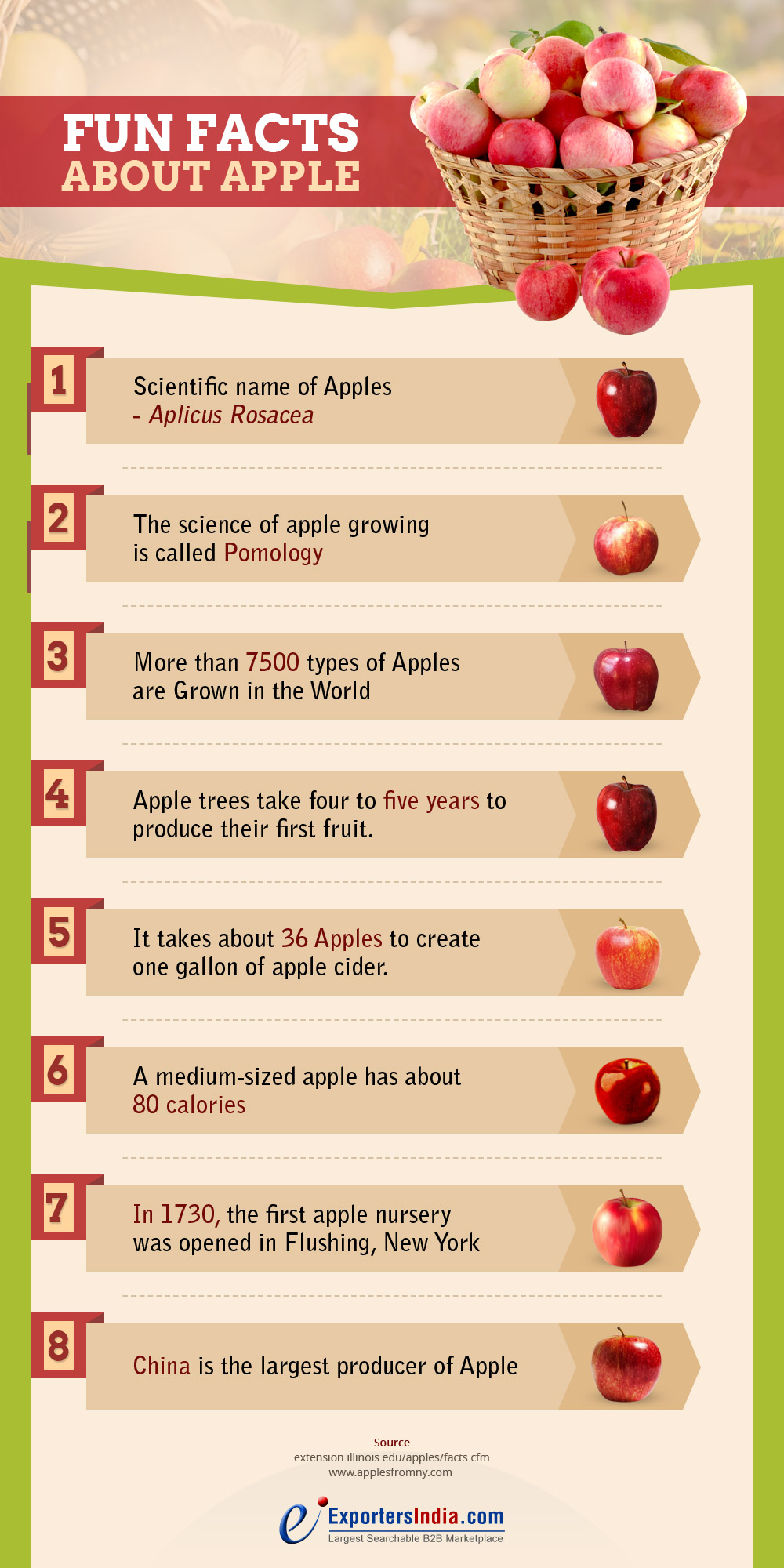 Facts About Apple Fruit