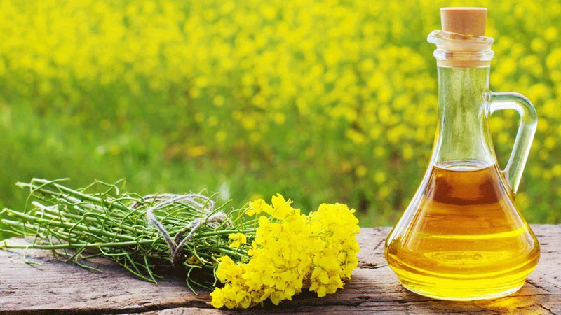 What Are Aromatic and Essential Oils and Their Benefits?