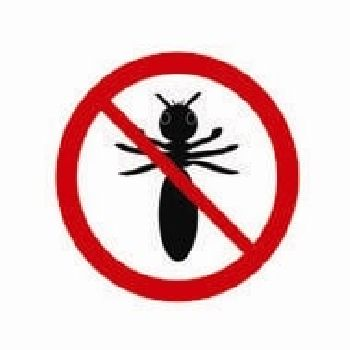 Termite Proof