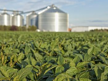 Fertilizers Industries
