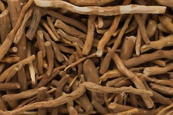Withania Somnifera (ashwagandha Root)