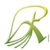 Royappa Agro International