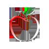 Apple Tree Studio