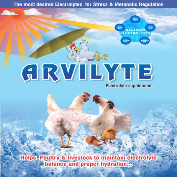 Arvilyte Electrolyte Supplement