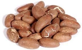 Ojitra Herbal Seed