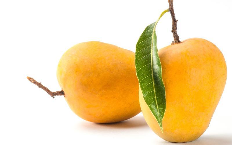 A Grade Kesar Mangoes