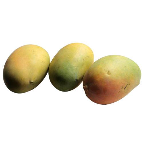 Organic Kesar Mango