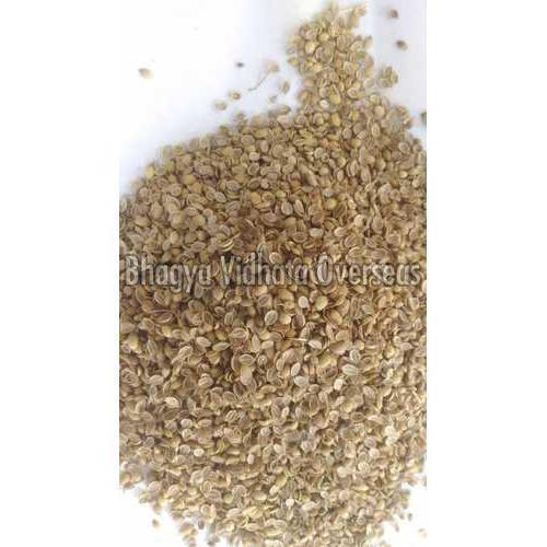 Natural Split Coriander Seeds