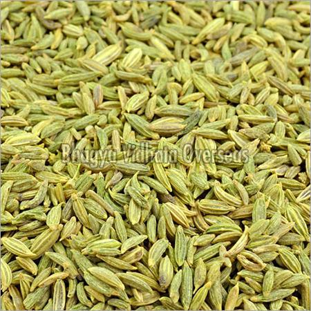 Roasted Fennel Seeds