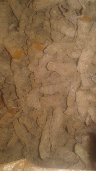 Unpolished Turmeric Root