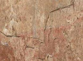 Golden Quartzite Slatestone