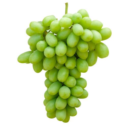 Fresh Thomson Grapes