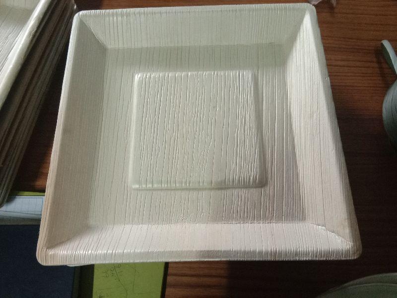 10 Inch Areca Leaf Square Plate