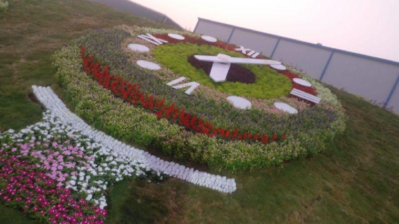 Garden Floral Clocks