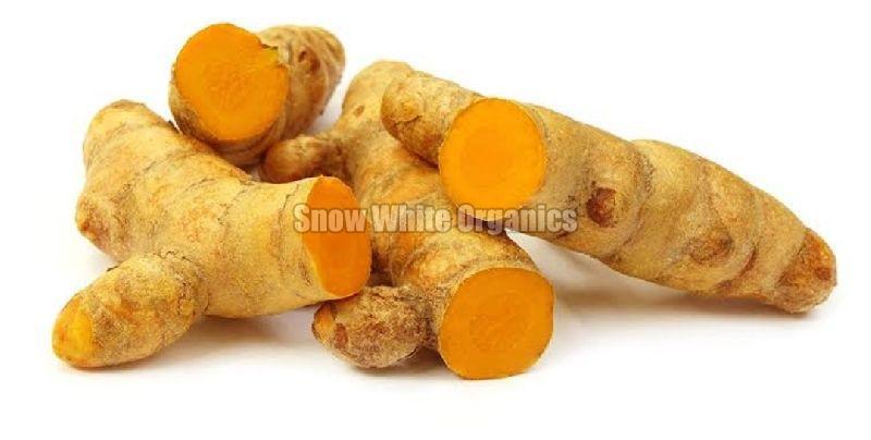 Fresh Organic Haldi
