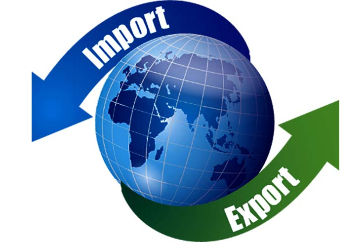 Import Export Business Consultancy Services