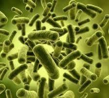 Bactericide (Amine Type)