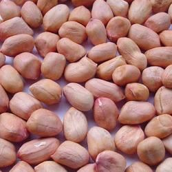 Organic Groundnut Kernels