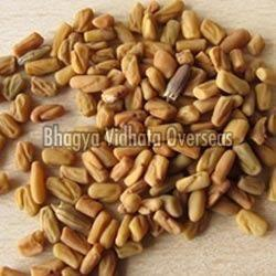 Bold Fenugreek Seeds