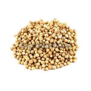 Loose Coriander Seeds