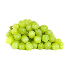 Fresh Seedless Grapes