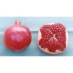 Mridula Pomegranate