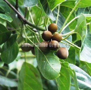 Natural Organic Bahera