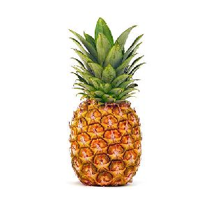 Fresh Natural Pineapple