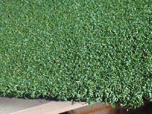 Multi Sports Grass